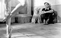 Ingmar Bergman: 'Juegos de verano', evocando el amor perdido