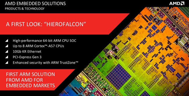 AMD Hierofalcon ARM