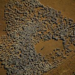 Foto 7 de 37 de la galería la-tierra-desde-el-cielo en Xataka Foto