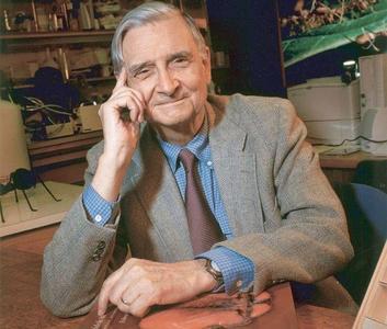 Dice Edward O. Wilson que las humanidades importan más que la ciencia