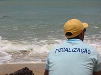 Paraísos fiscales ahogados