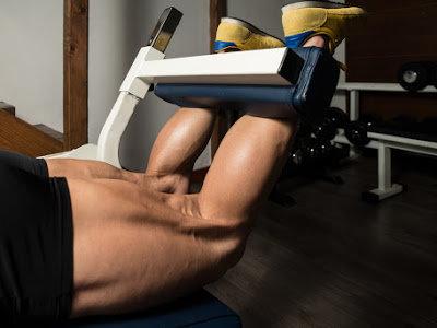 La importancia de la musculatura isquiotibial