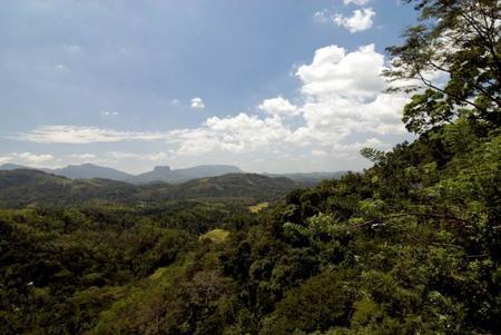 srilankapaisaje