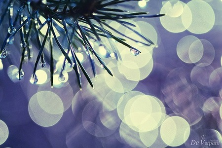 fotos-bokeh-divertidas-11.jpg