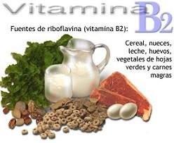 Las funciones de la vitamina B2