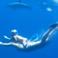 El impresionante vídeo de una madre y su hija de dos años nadando con delfines
