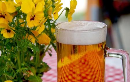 7 cervezas artesanales perfectas para que disfrutes en verano