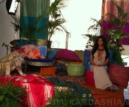 Kim Kardashian y su cara con el tigre, el mejor regalo de un aburrido viernes