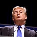 La búsqueda de protestas contra Donald Trump acapara los resultados de Google en Estados Unidos