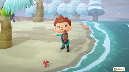 Animal Crossing: New Horizons: lista con todas las criaturas de la pesca submarina de febrero