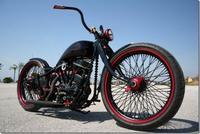 Harley Davidson Panafina, campeona mundial