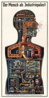 El interior de nuestro cuerpo visto por Kahn