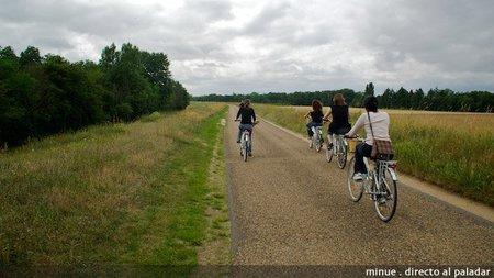 Enoturismo en el valle del Loira - actividades