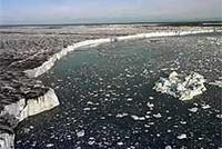 ¿Qué ecosistemas desaparecerán este siglo?