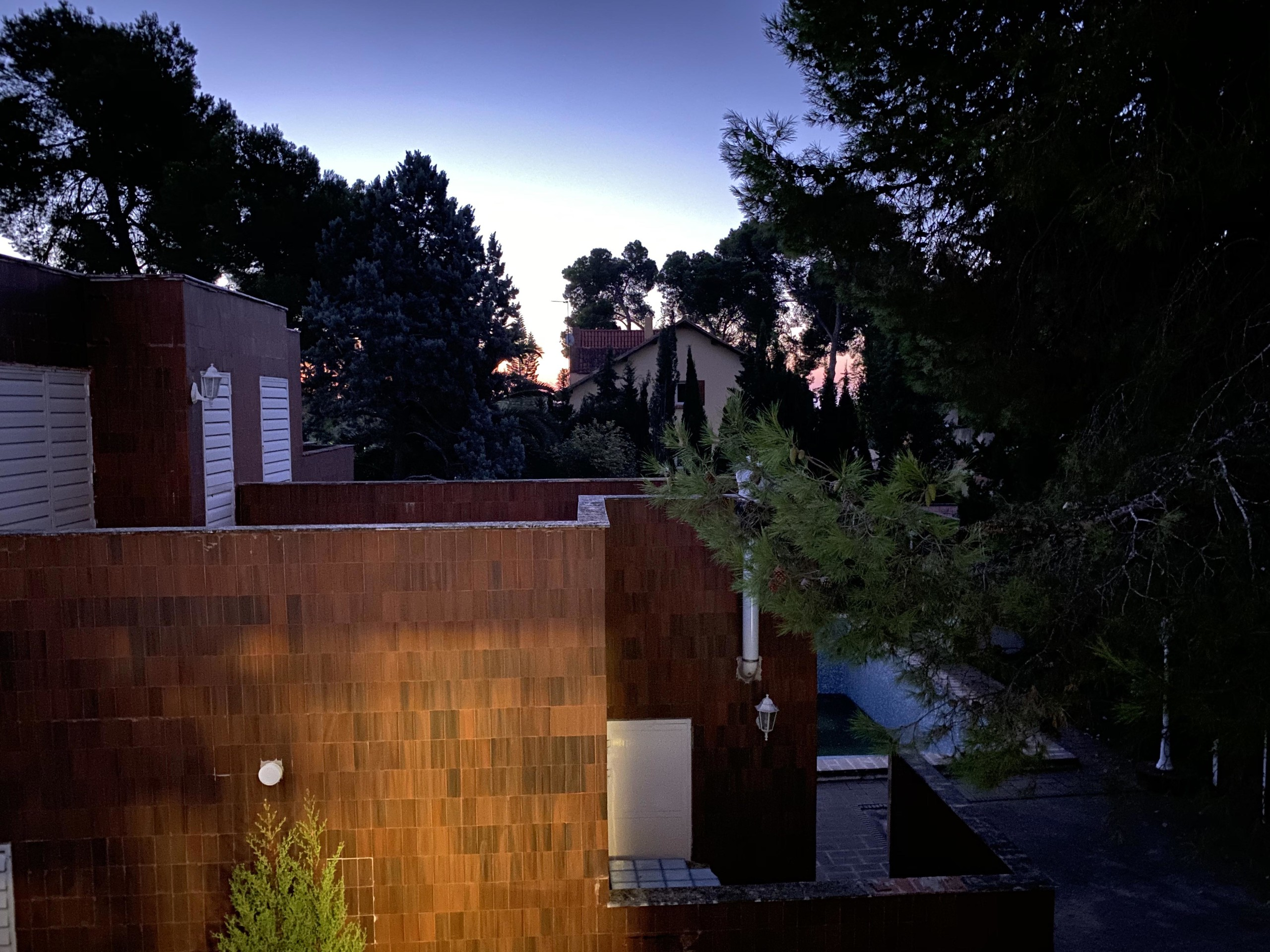 Foto de iPhone 11, modo noche (23/23)