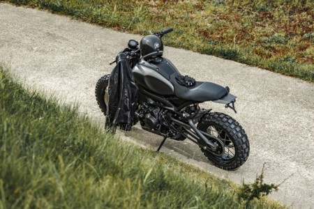 Yamaha Xsr900 Monkee Beast 15