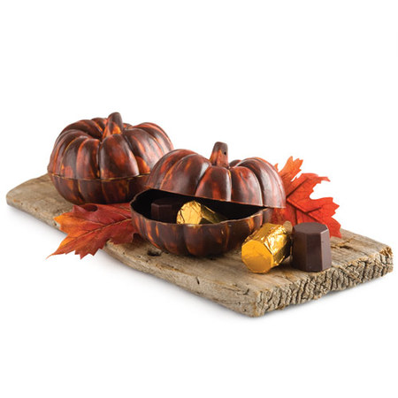 Calabaza de chocolate