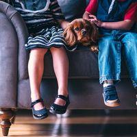 Convivir con mascotas durante la infancia reduce la probabilidad de desarrollar alergias