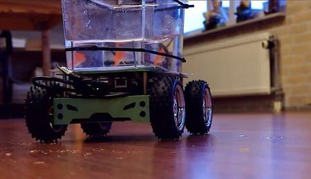 [Vídeo] El pez que conduce su propia pecera con ruedas
