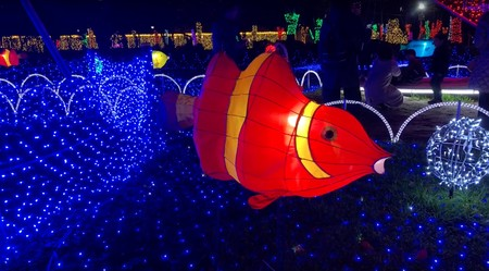 Festival Luces Tokio