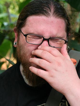 rinitis alergica estacional sintomas
