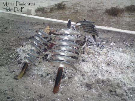 La Caña de España. Chiringuitos en Vera playa