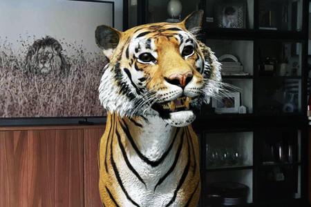 Los animales en 3D de Google llegan a decenas de móviles más: ARCore llega a Pixel 4a, Xiaomi Mi 9 Lite, Galaxy M31s y más