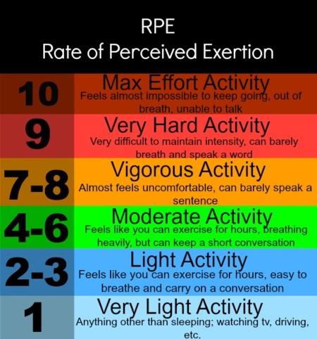 circuito workout