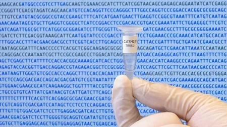 Acabamos de aprender a reescribir la vida con un algoritmo: un genoma diseñado por ordenador para entender mejor la vida sintética