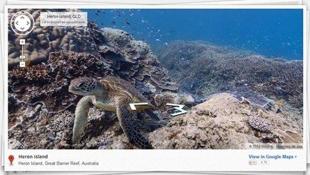 Ahora, con Google Maps, también podréis bucear por los mares y oceános del mundo