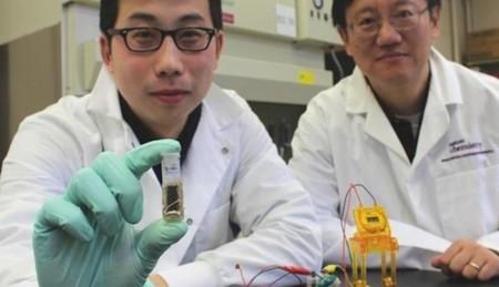 Las baterías de azúcar podrían resolvernos la vida en 2017