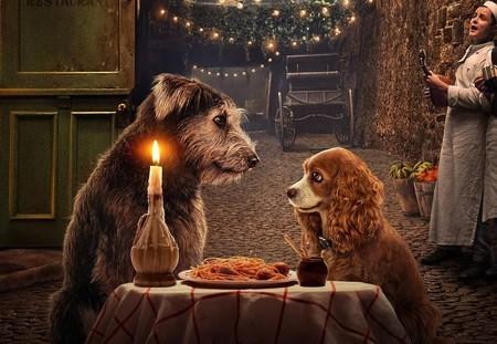 'La dama y el vagabundo': un inofensivo remake en acción real para Disney+ con un par de entrañables perretes