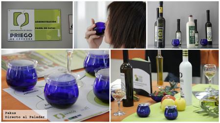 aceite oliva DO Priego de Córdoba