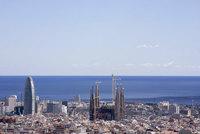 Barcelona: abetos ecológicos con poca participación