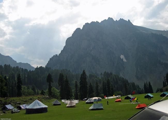 Camping con niños 2