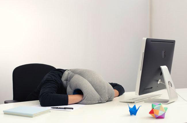 ostricht Pillow
