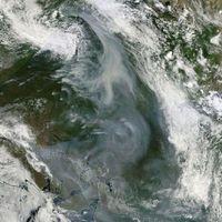¿Cuánto tuvo lugar el mayor incendio forestal del que se tenga constancia?