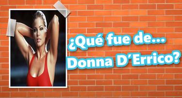 ¿Qué fue de... Donna D'Errico?