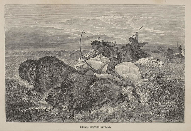 Dodge Buffalo