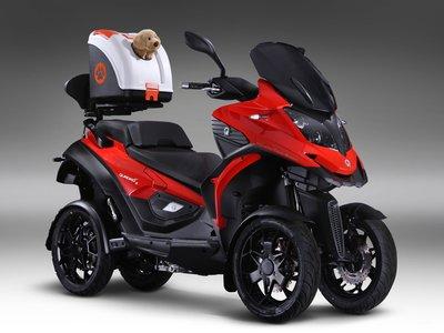 ¿Por qué no? Con los accesorios de Quadro ya puedes sacar a tu mascota de paseo en moto