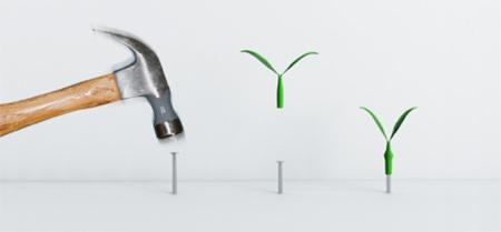 Un colgador de llaves con forma de hoja