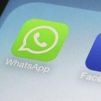 La historia de my-love.co, el malware que te llegó por medio de WhatsApp esta navidad