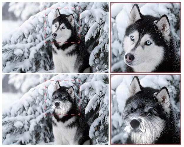 Poner a la foto de tu husky el hocico de un bulldog y el gesto de tu gato ya es posible (y fácil) gracias a la IA
