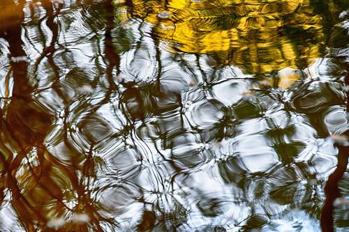 Bruce Hall: el fotógrafo ciego que observa el mundo a través de su cámara
