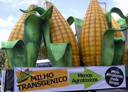 Manifestacao Pro Milho Transgenico Antonio Cruz 20mar07