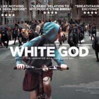 'White God', la rebelión de los perros