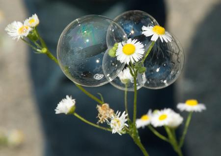 ¿Hay una burbuja en el arte?