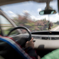 ¡Trambólico! Un conductor, detenido por circular con un carnet de conducir de la 'República Errante Menda Lerenda'