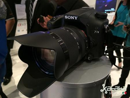 Sony Mexico 20 03