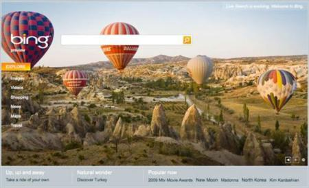 Bing pierde popularidad después del hype inicial
